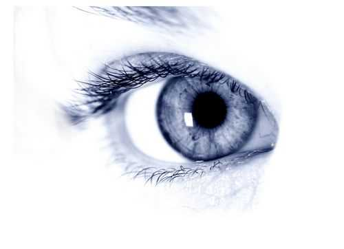 Holistic ophthalmology by first-class specialists - premium clinics - practice